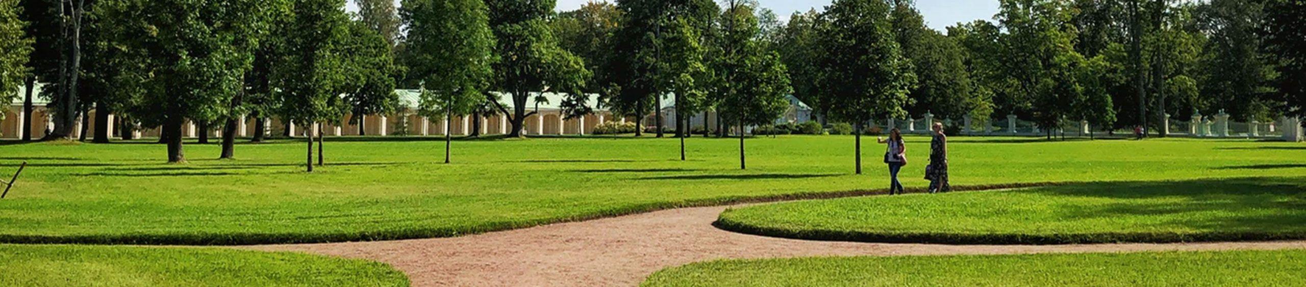 landscaper-lawns-turf-hero-background